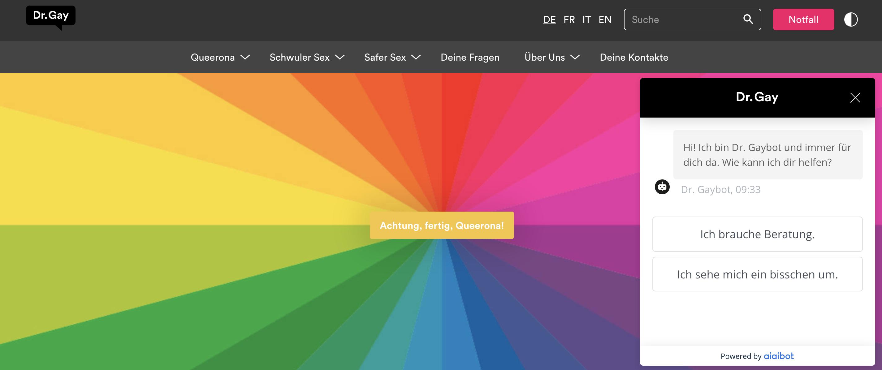 Chatbot Projekt für Dr. Gay