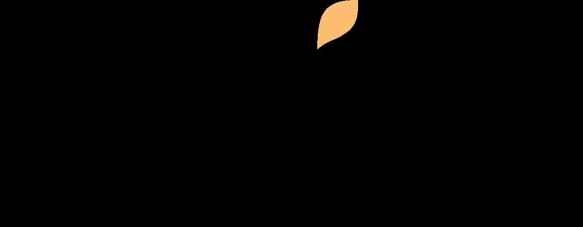 wix logo original